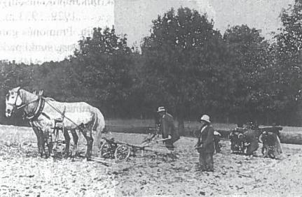 Žėmės ūkio darbai Lenkijoje
