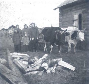 Lietuviai atvyksta į tremties vietą. Bielyj Jaras, Tomsko sr., Kargasoko r. 1951 10 20