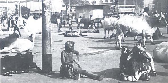 Indijos didmiesčio gatvė