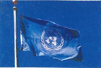 JTO vėliava