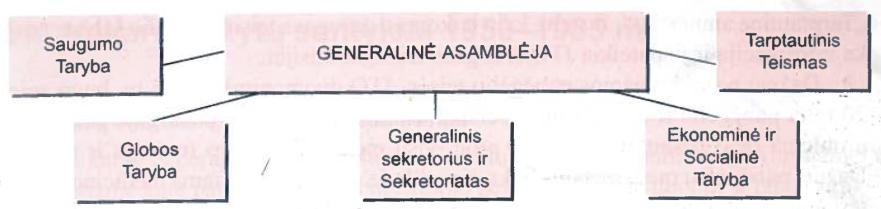 Jungtinių Tautų Organizacijos struktūra